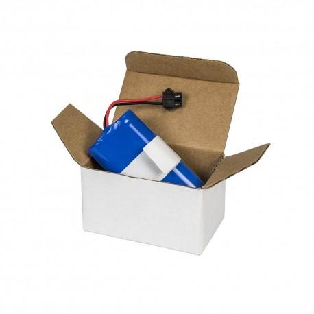 Batería de repuesto Gamas Conga y Conga Slim -